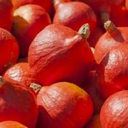 Confiture de figues (0,430kg)