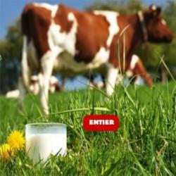 6L lait de vache ENTIER bio UHT
