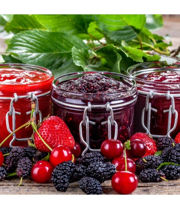 Confiture de fruits rouges bio (340g)